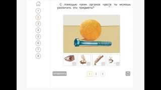 Электронный интерактивный учебник. ОКРУЖАЮЩИЙ МИР. 1 класс