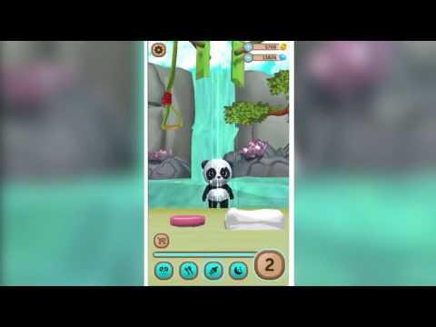 Daily Panda : Trailer