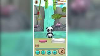 Daily Panda : virtual pet