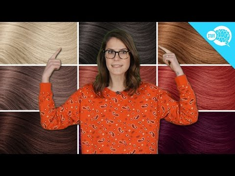 What Determines Your Hair Color?
