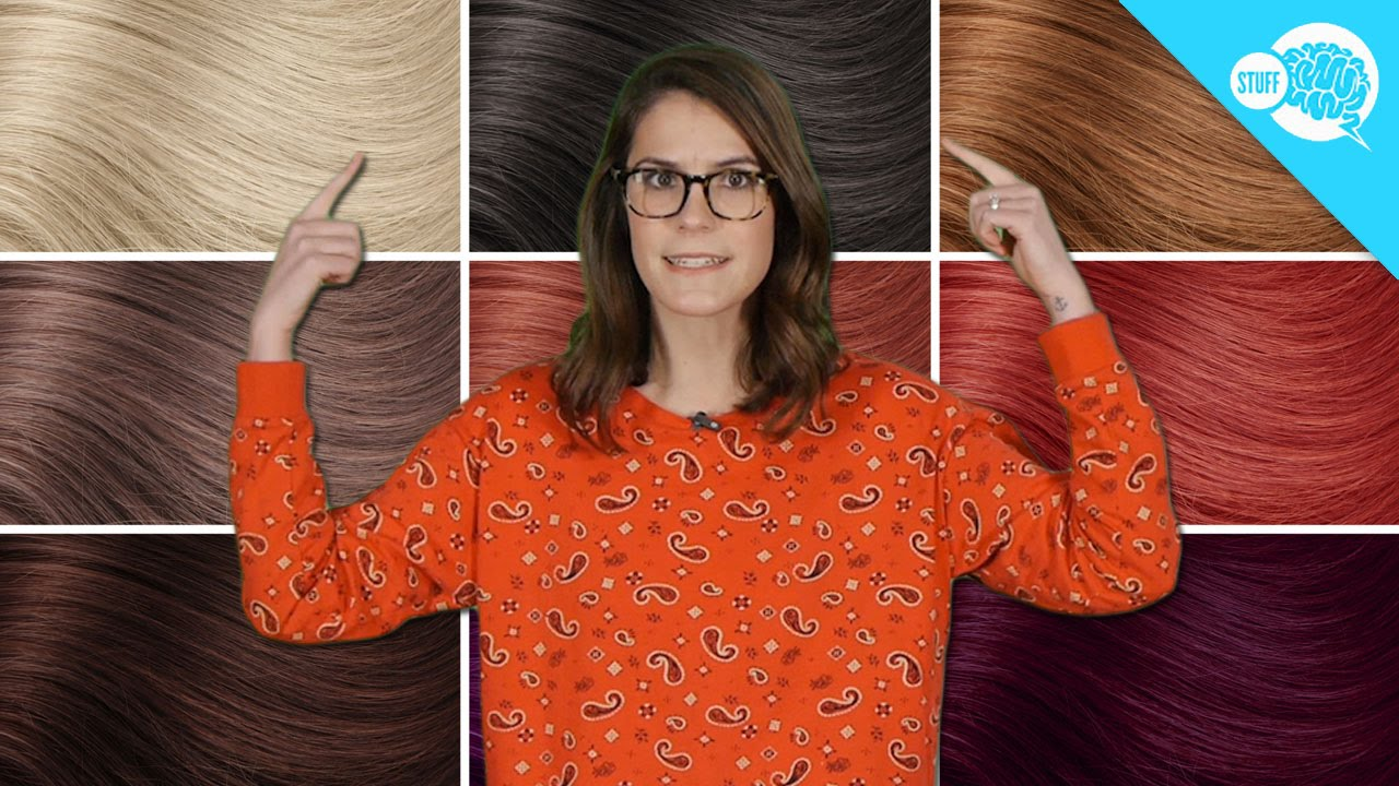 What Determines Your Hair Color? - YouTube