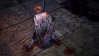 Path of Exile: Spider Web Cloak