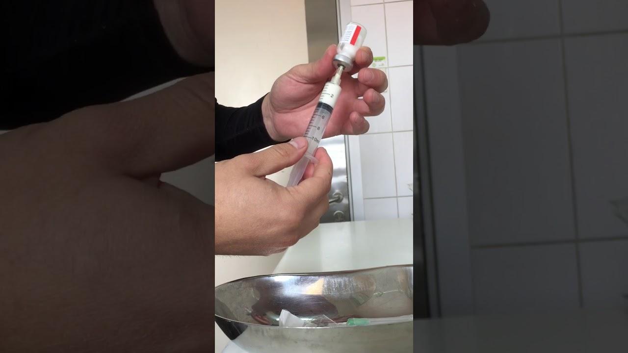 Para que sirve la penicilina benzatinica 2400