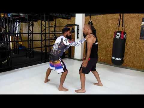 Shuai Jiao   Kung Fu Wrestling, Defense Techniques