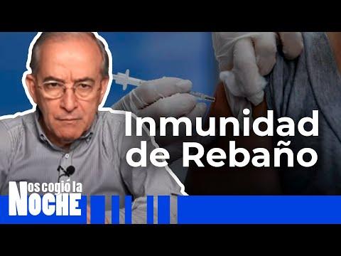 Cuántas Personas Tienen Que Vacunarse Para Qué Haya Inmunidad - Nos Cogió La Noche