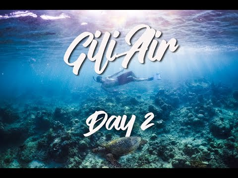 gili-air-indonesia-|-vlog-day-2---we-found-a-turtle!-🐢