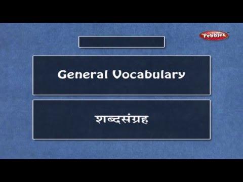 Learn Marathi Vocabulary | Learn Marathi Through English | Learn Marathi Grammar For Beginners