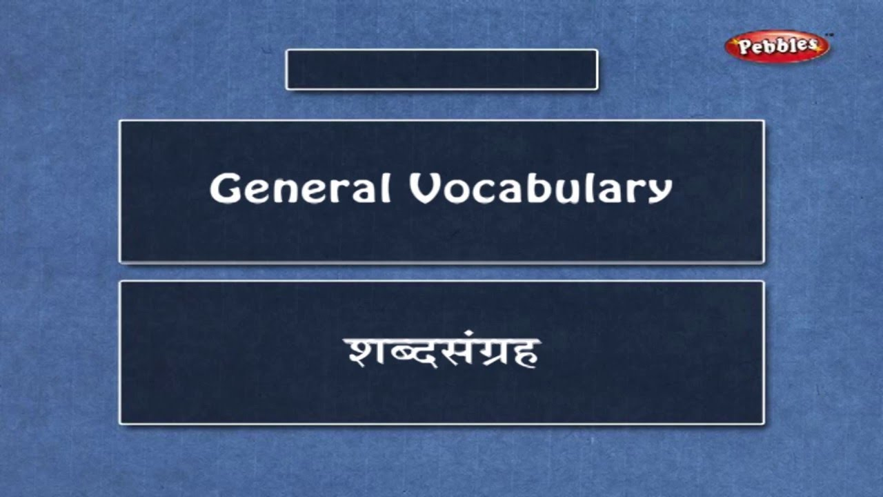 Learn Marathi Vocabulary Learn Marathi Through English Learn Marathi Grammar For Beginners Youtube