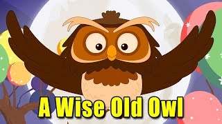 A Wise Old Owl Song - Animation Kids Rhymes   English Kids Song   Kids Learning Videos