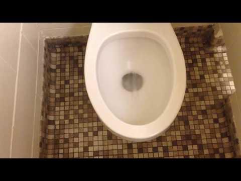 1978 American Standard Glenco Toilet