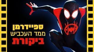 ספיידרמן: ממד העכביש | ביקורת  (ללא ספויילרים) שובר מסך