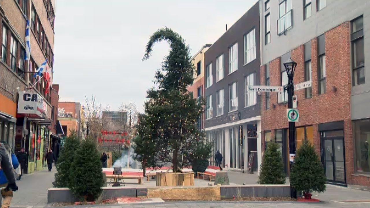 Ugly Christmas Tree.Montreal S Ugly Christmas Tree Gets Surprising Reaction