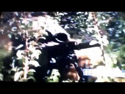 Deadliest Warrior Us Army Rnagers Vs North Korean SOF