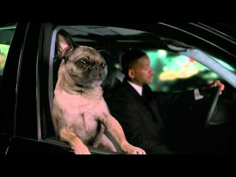 Men In Black Talking Dog