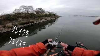 2018/12/11釣り納め?となるかもしれない釣行に行って参りました なんと...
