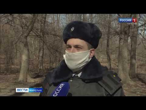 «Вести-Карелия» 22.04.2020