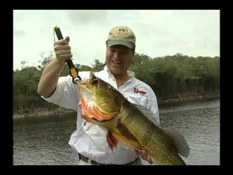 Simply Fishing 1711 Brazil Peacock Pt 1 2006