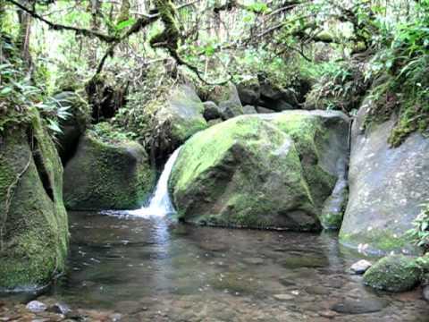 Waialeale Basin Waterfall