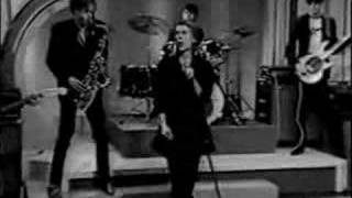 Watch Psychedelic Furs We Love You video