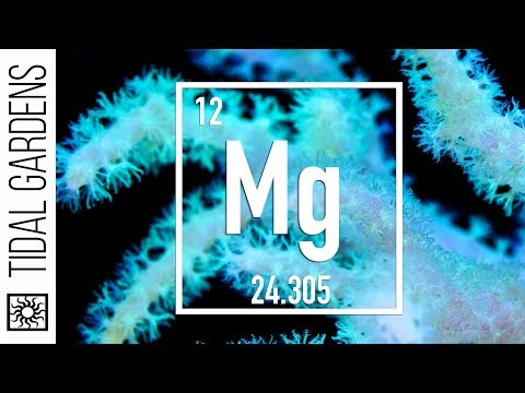 Reef Chemistry: Magnesium Level Testing