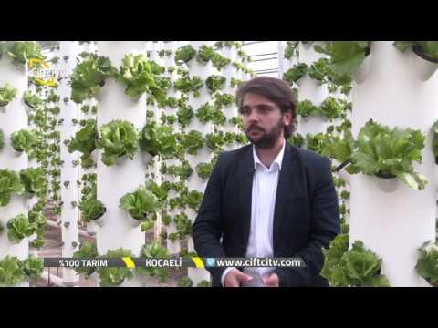 %100 Tarım-Dikey Sistem Topraksız Tarım....