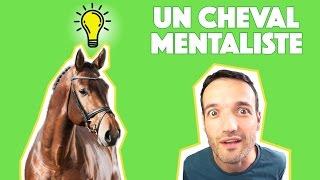 Un cheval mentaliste bluffe la population