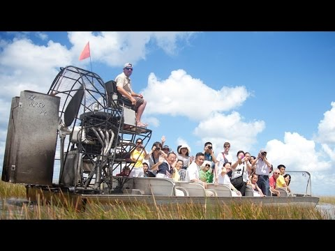 Everglades Tours | Airboat Tours | Gator Park