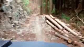 飯能市名栗の林道は途中で通行止めでした。