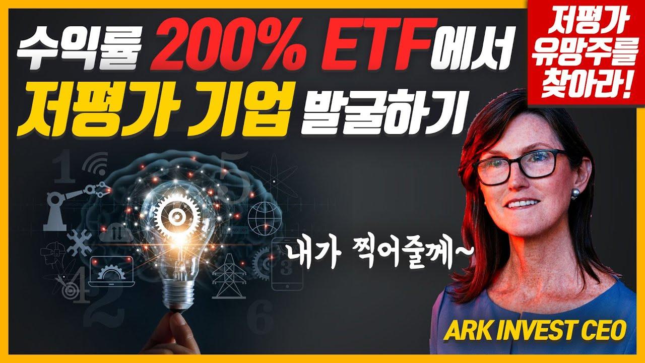 3년 수익률 200% ETF의 대표가 찍어준 기업에서 저평가 기업을 골라 내보자 | 4차산업혁명 파괴적인 혁신에 투자하는 ARK Invest