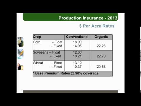 John Molenhuis - Cost of Production, Organic vs. Conventional