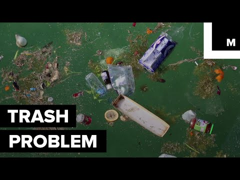 """Floating """"Island of Trash"""" has Surfaced in the Caribbean"""