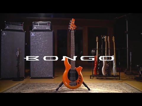 Ernie Ball Music Man Bongo 5 Bass