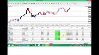 160 Pips using the Only 20 Pips Forex EA Set and Forget