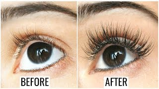 Tamil Beauty Tips - How to Grow Long, Thick, Strong Eyelashes & Eyebrows