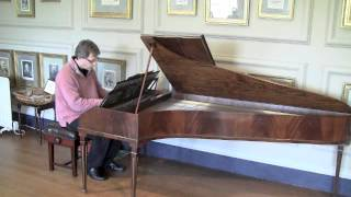 Haydn E flat Sonata HobXVI49 longer excerpt