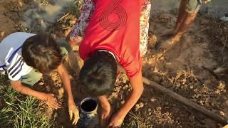 Primitive Wilderness Tool: Amazing trick to catch eel