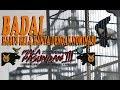 Kacer Badai Harus Rela Hanya Dengan Nominasi  Mp3 - Mp4 Download