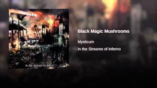 Black Magic Mushrooms