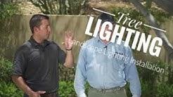 Landscape Lighting Installation - Tree Lighting Tips