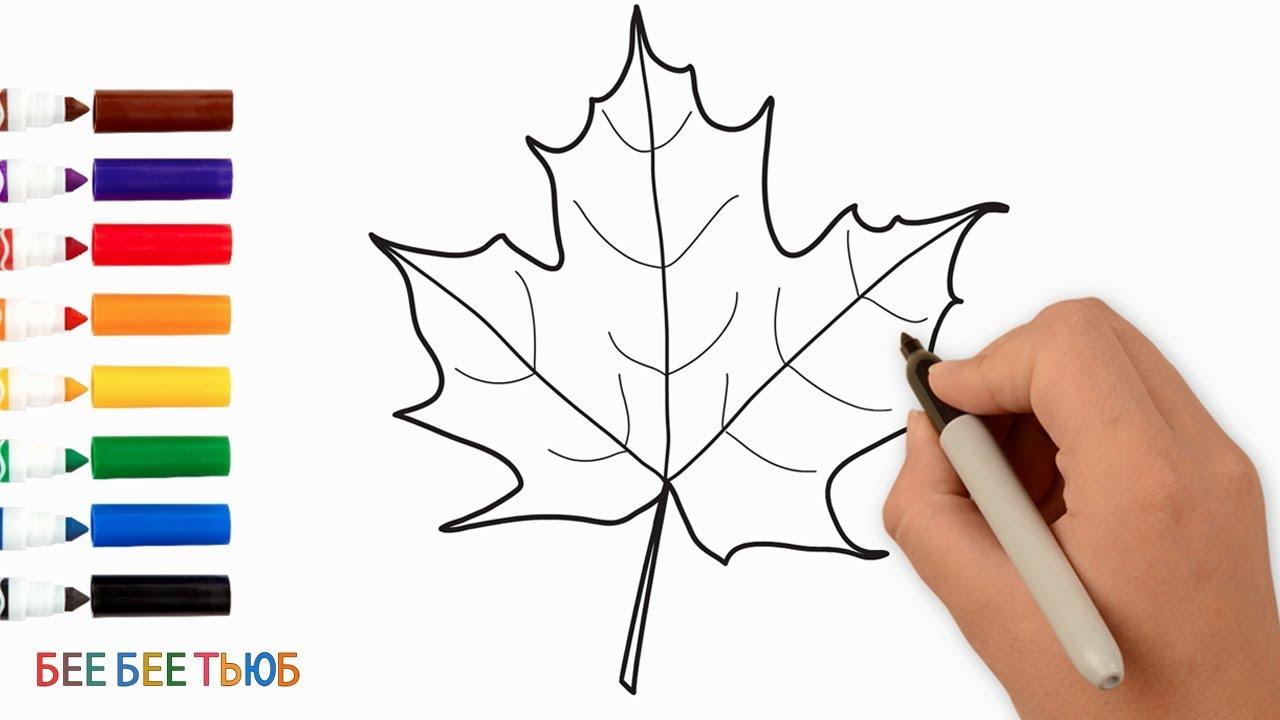 Как Рисовать Осенний Кленовый Лист | Рисование и Раскраска ...