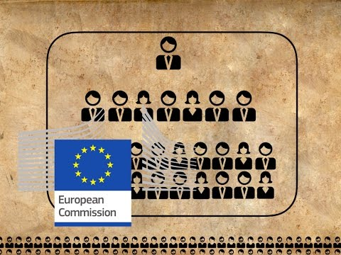 The European Commission explained