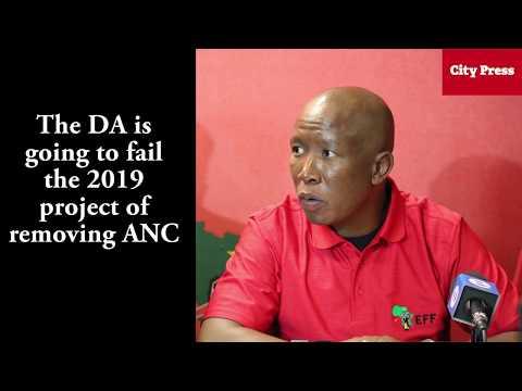 Malema: Suspend Zille as premier or else