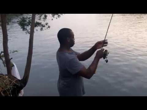 Sheepshead Fishing Wilmington, NC