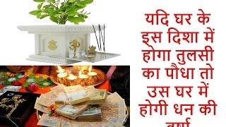 यदि घर के इस दिशा में होगा तुलसी का पौधा तो उस घर में होगी धन की वर्षा || benefits of tulsi|| Vastu
