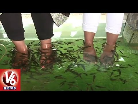 City People Attracted Towards Fish Pedicure (Doctor Fish Therapy) | Hyderabad | V6 News