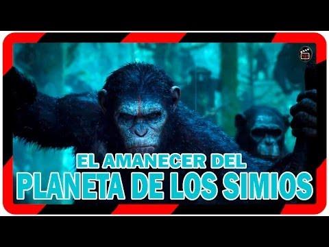 Pelicula: El amanecer del planeta de los simios (2014) II Trailer español planeta de los simios