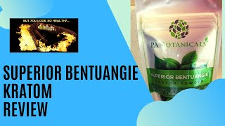 Superior Bentuangie Kratom Review: Using Kratom for Fibromyalgia and Chronic Fatigue Syndrome
