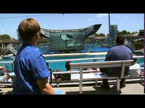 Marlo's Story - PWI's SeaWorld Superstar