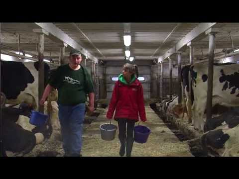 Part 1: Life Of A Dairy Farmer
