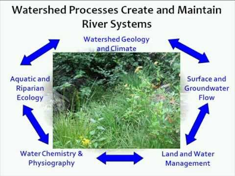 Stream Habitat Management: Assessing Stream Condition and Identifying Management Options